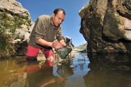 Jaime Bosch, uno de los autores del estudio. Foto de Solvin Zanki/Tomada de Nature Picture Library
