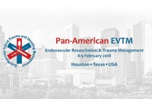 Pan-American EVTM Symposium February 8-9, 2018, in Houston, Texas