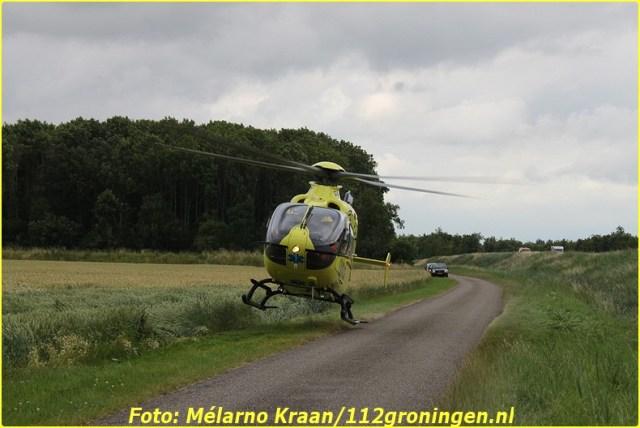 2014 07 05 beerta (12)-BorderMaker