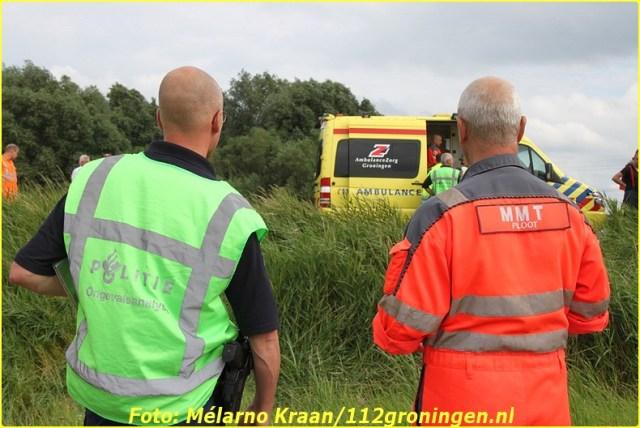 2014 07 05 beerta (9)-BorderMaker