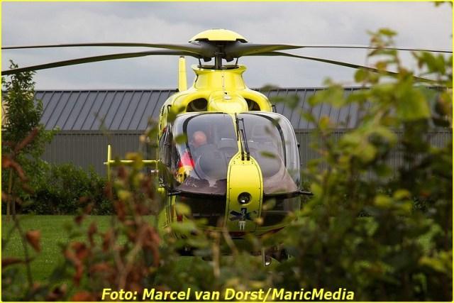 2014 08 14 DEN HOUT 01 (6)-BorderMaker