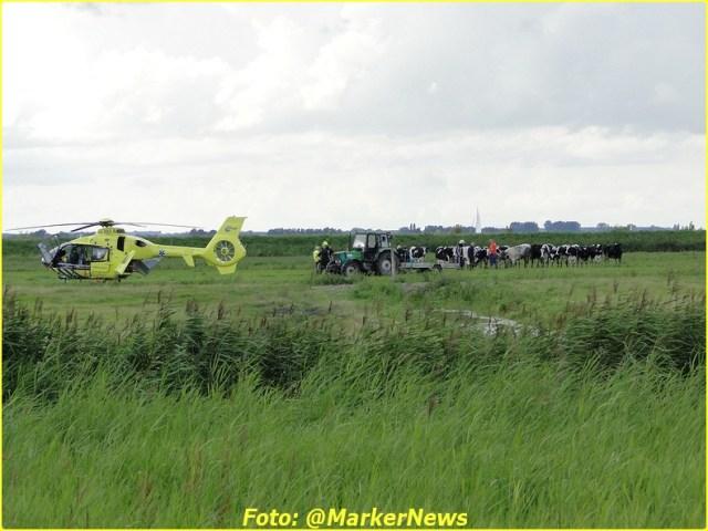 2014 08 24 marken (22)-BorderMaker