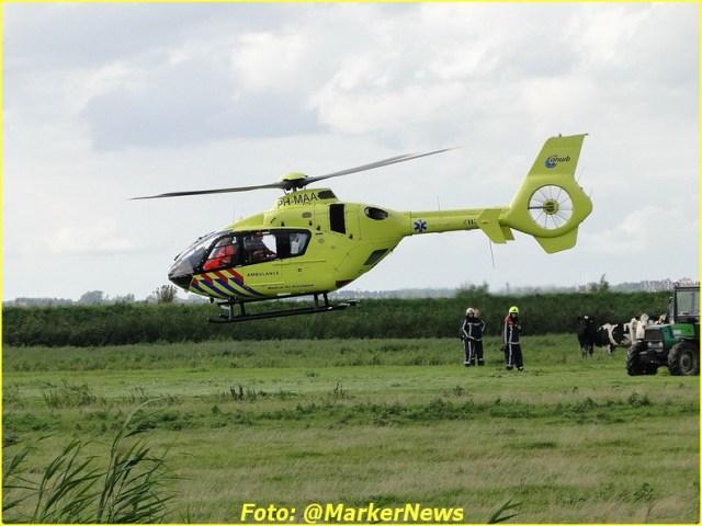 2014 08 24 marken (30)-BorderMaker