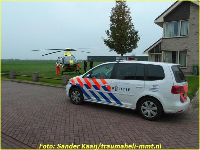 2014 11 20 avenhorn (12)-BorderMaker