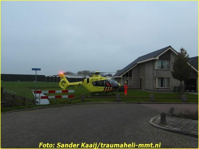 2014 11 20 avenhorn (23)-BorderMaker