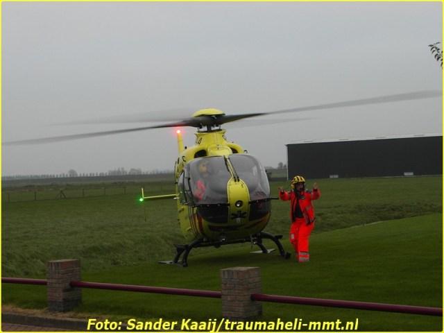2014 11 20 avenhorn (3)-BorderMaker
