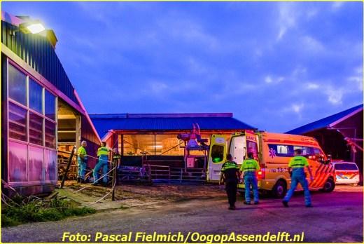 20150830_Pascal_Fielmich_PFB8470-BorderMaker