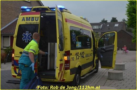LFL inzet Polderplein Benthuizen (2)-BorderMaker