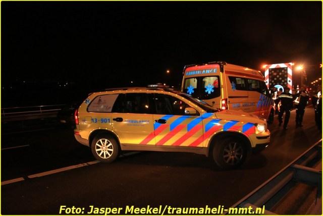 jasper (3)-BorderMaker