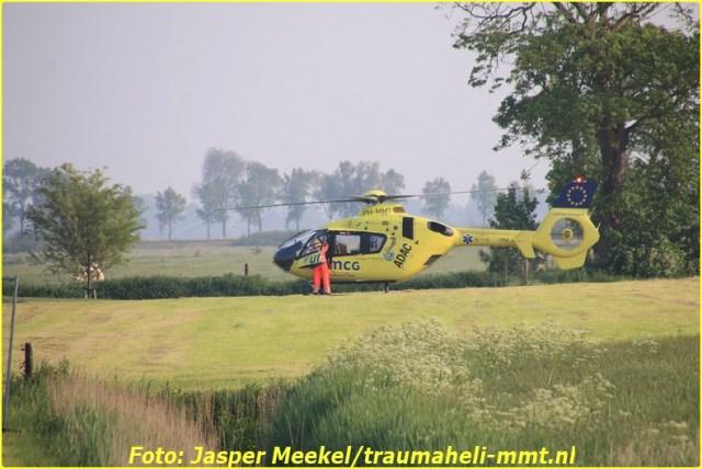 jasper (1)-BorderMaker