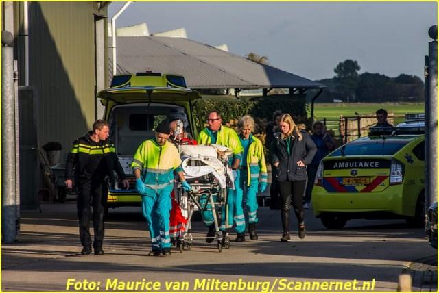 incident_horsea_19102016_maurice_van_miltenburg-4-bordermaker