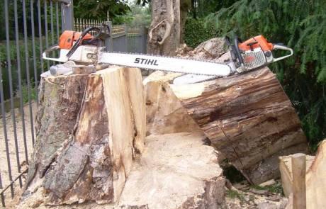 Geräte zur Baumfällung von Großbäumen