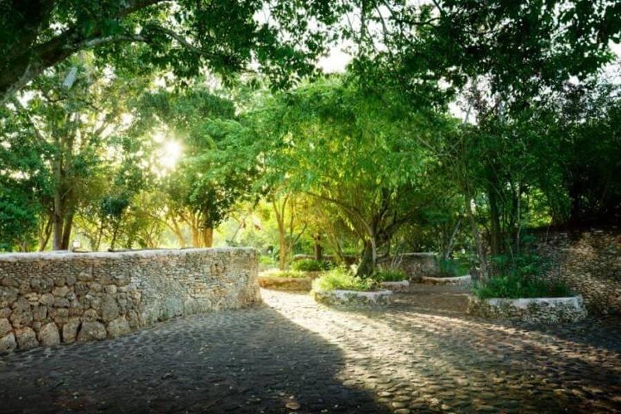 Naturgarten anlegen