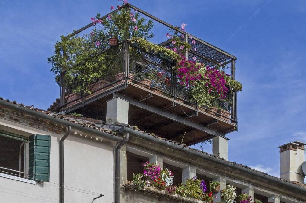 Stadtgarten auf dem Dach