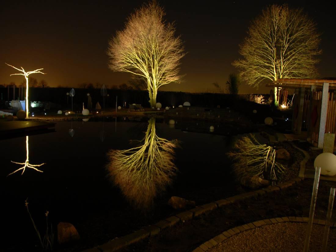 Extrem Licht im Garten | Galabau Mähler | Gartenstrahler WY95