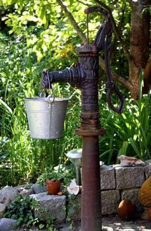 Wassergarten gestalten