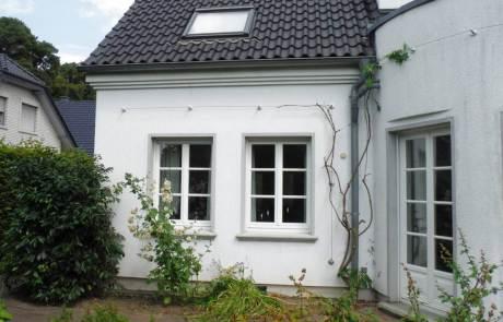 Fassadenbegrünung von Wärmedämmputz