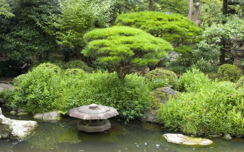 Japanischer Themengarten