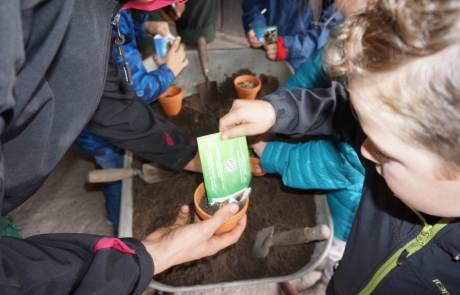 Aktion kleine Landschaftsgärtner bei Galabau Mähler