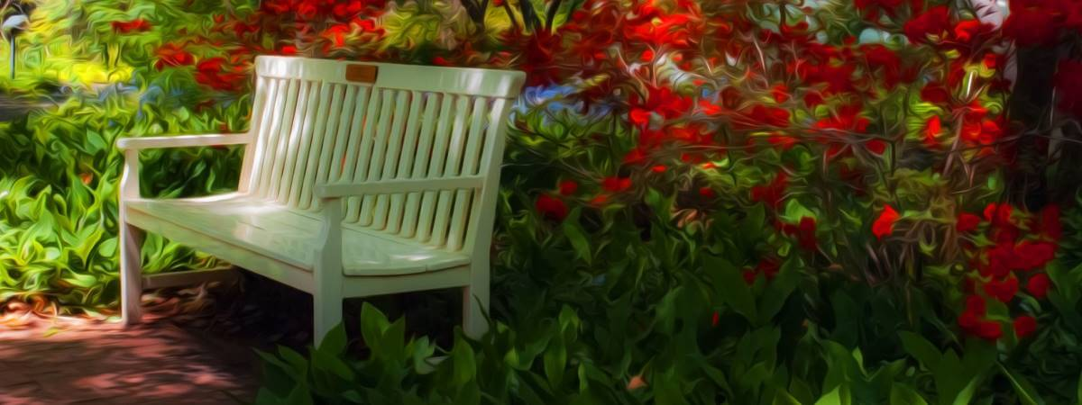 gestalten Schattengarten