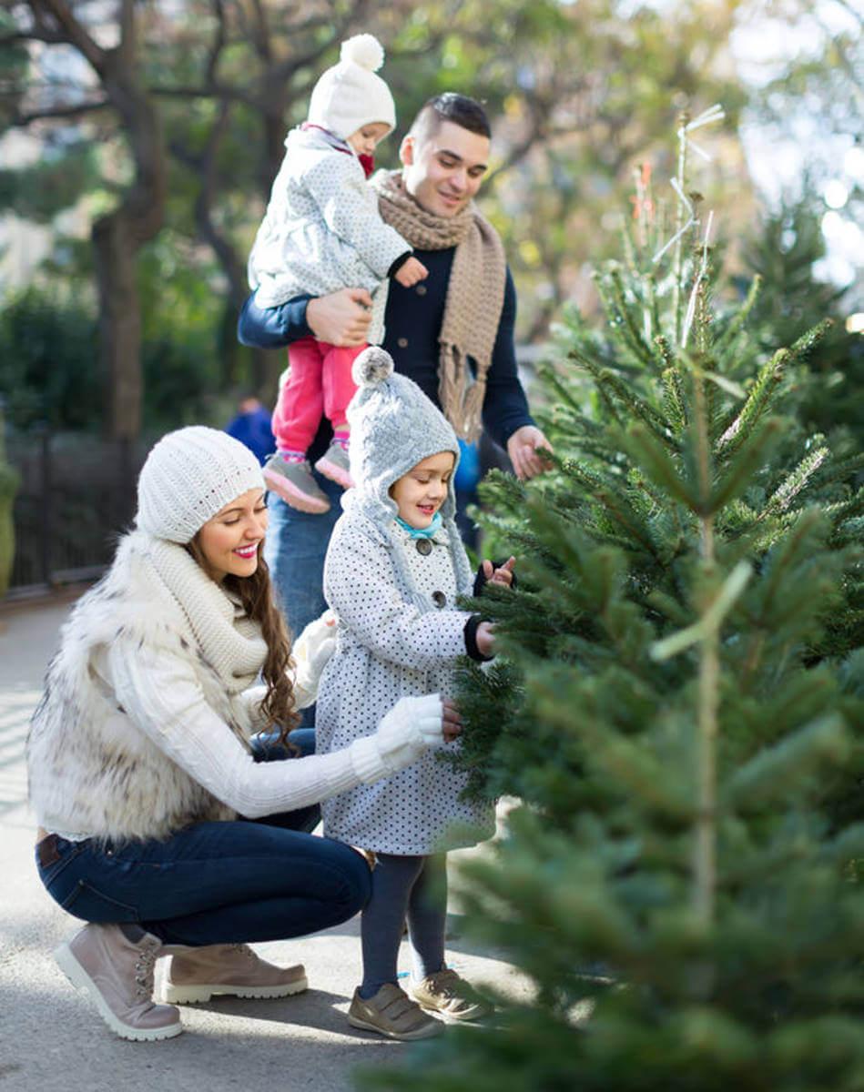 Weihnachtsbaum Kleve