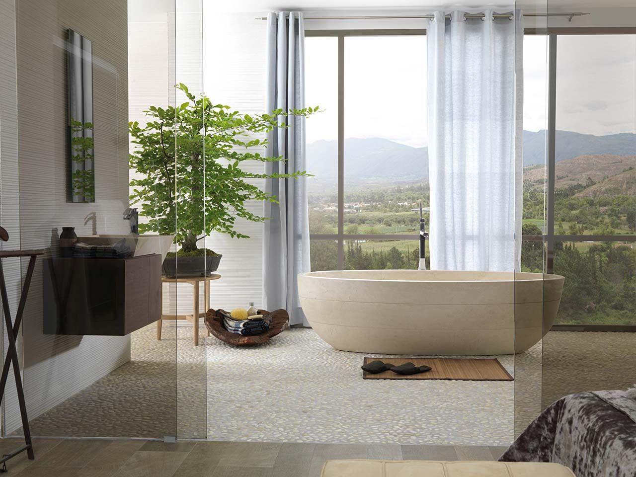 remplacement d une baignoire