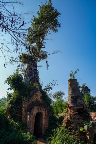 Overgrown pagoda ruins at In Dein, Inle Lake, Myanmar (Burma)