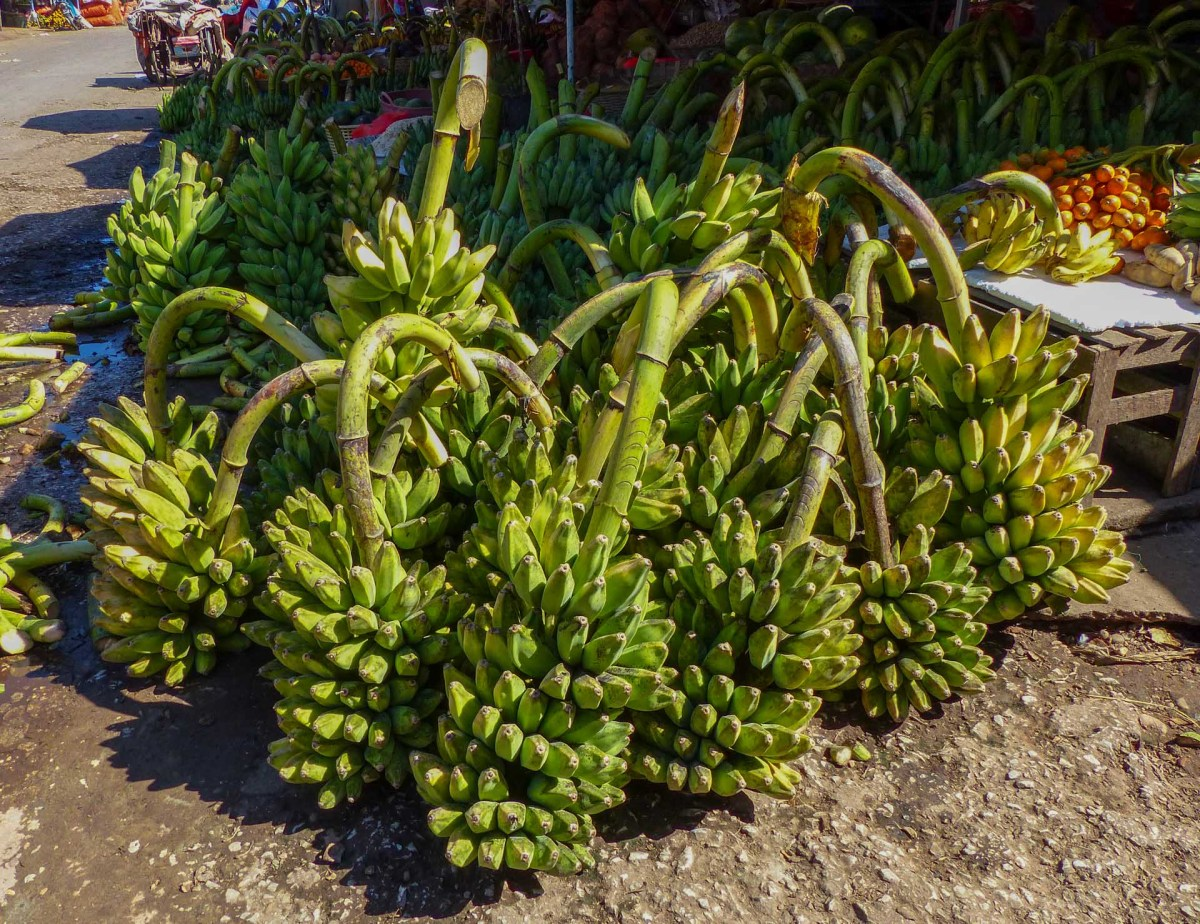 Bananas at Zeigyi Market in Mawlamyine