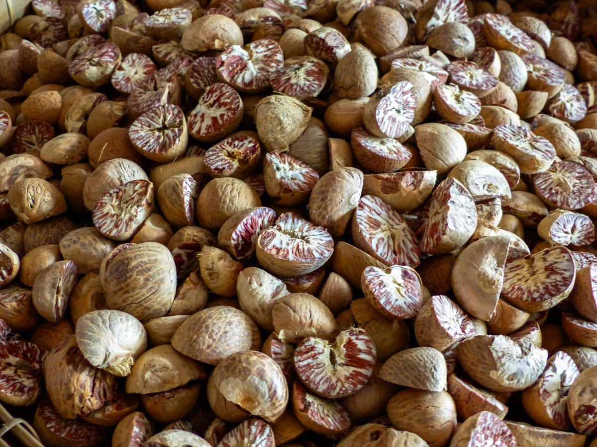Betel nuts at Zeigyi Market in Mawlamyine