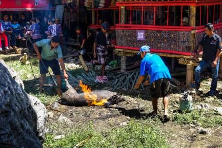 Tana Toraja Funeral Ceremony - burning off a dead pig's hair Christian Jansen & Maria Düerkop