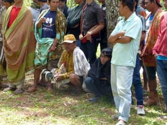 Tana Toraja - gathering in the meadows for a cock fight Christian Jansen & Maria Düerkop