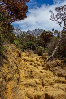 Mount Kinabalu - trek to the basecamp: tourist friendly steps and amazing colors Christian Jansen & Maria Düerkop