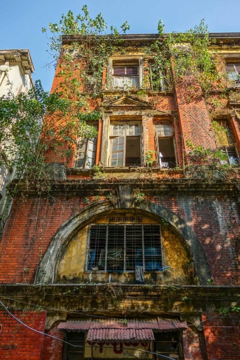 Yangon - Plants on colonial building Christian Jansen & Maria Düerkop