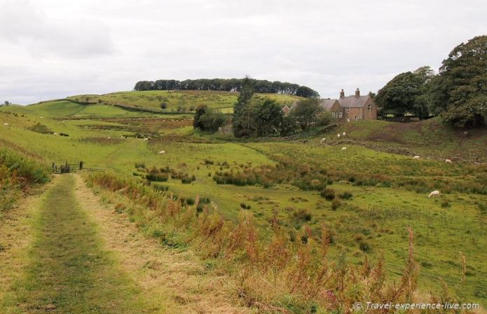 A farm and surrounding fields in England, Hadrian's Wall Path
