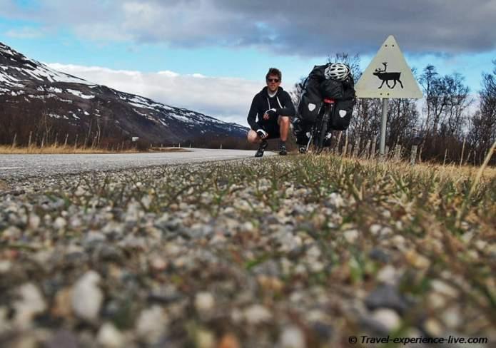 Reindeer sign in northern Norway.