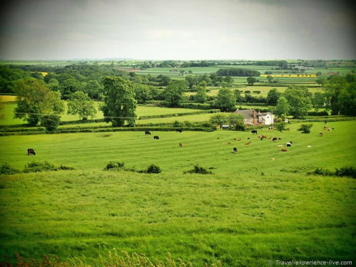 View from Brinklow Castle, England.