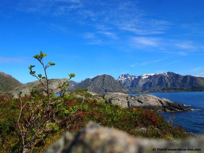 Landscape on the Lofoten in Norway.