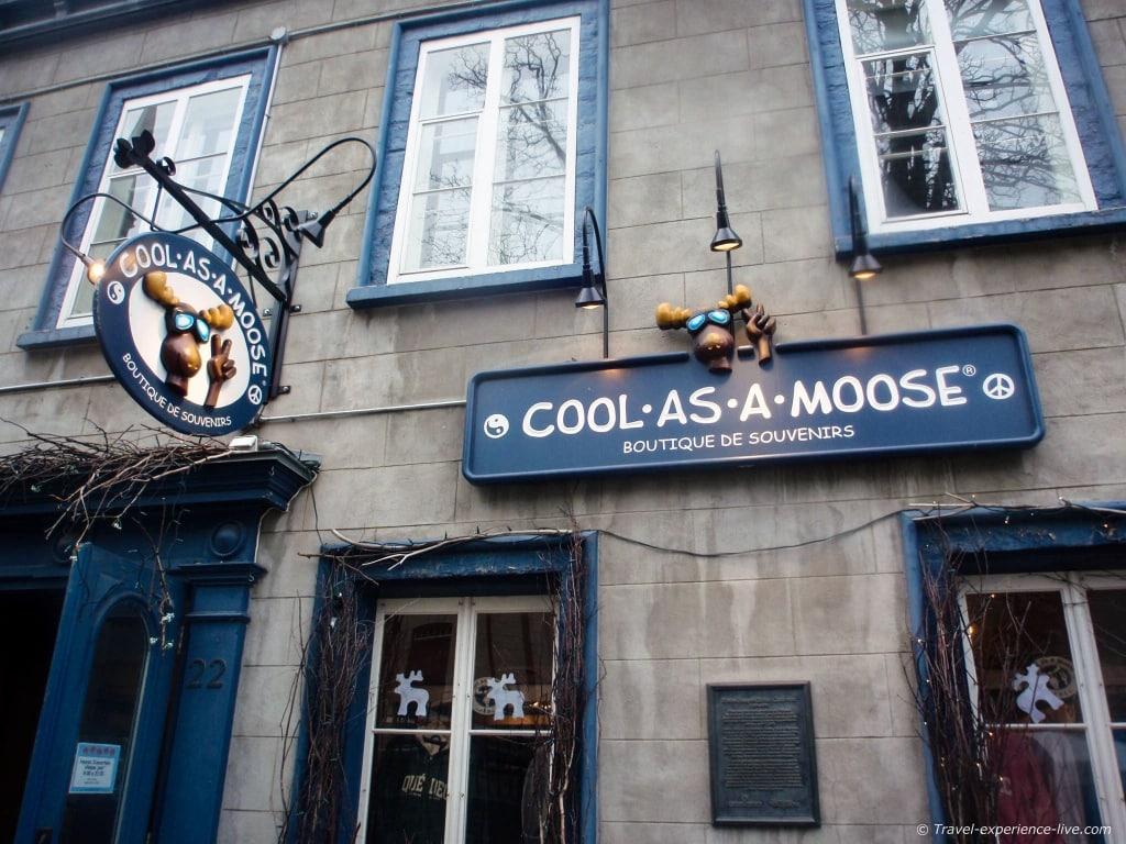 Cool as a moose, shop in le Vieux-Québec.