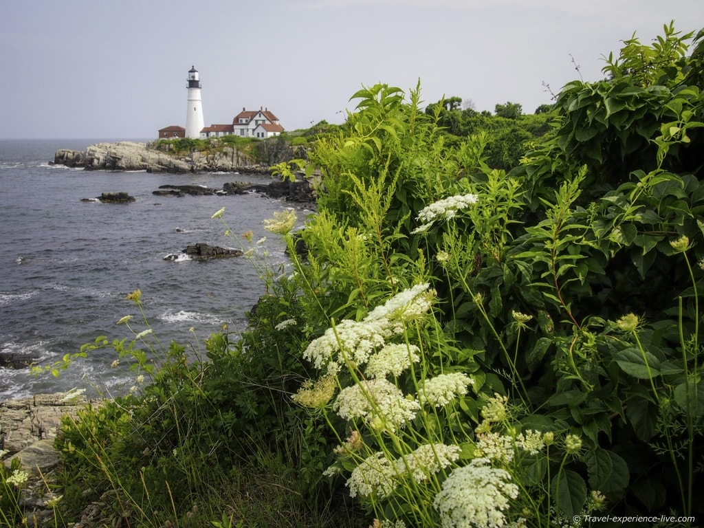 Portland Head Light, seen from a hiking trail in the park.