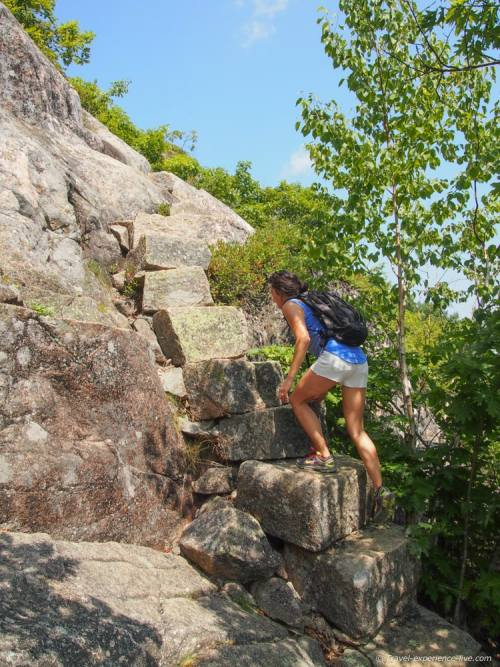 Rocky stairway on Champlain Mountain.