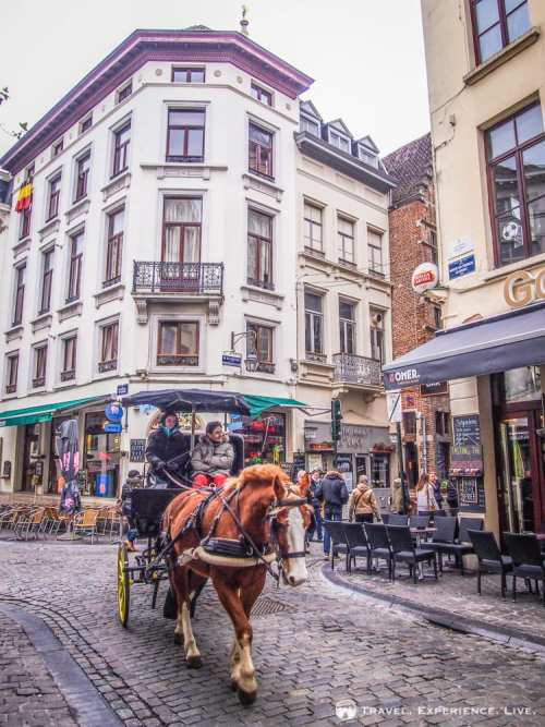 Horse-drawn carriage in Brussels