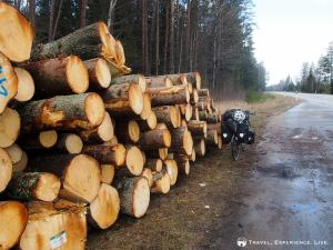 Sweden is log country