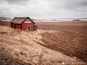 Fields on the shore of Lake Vättern, Sweden