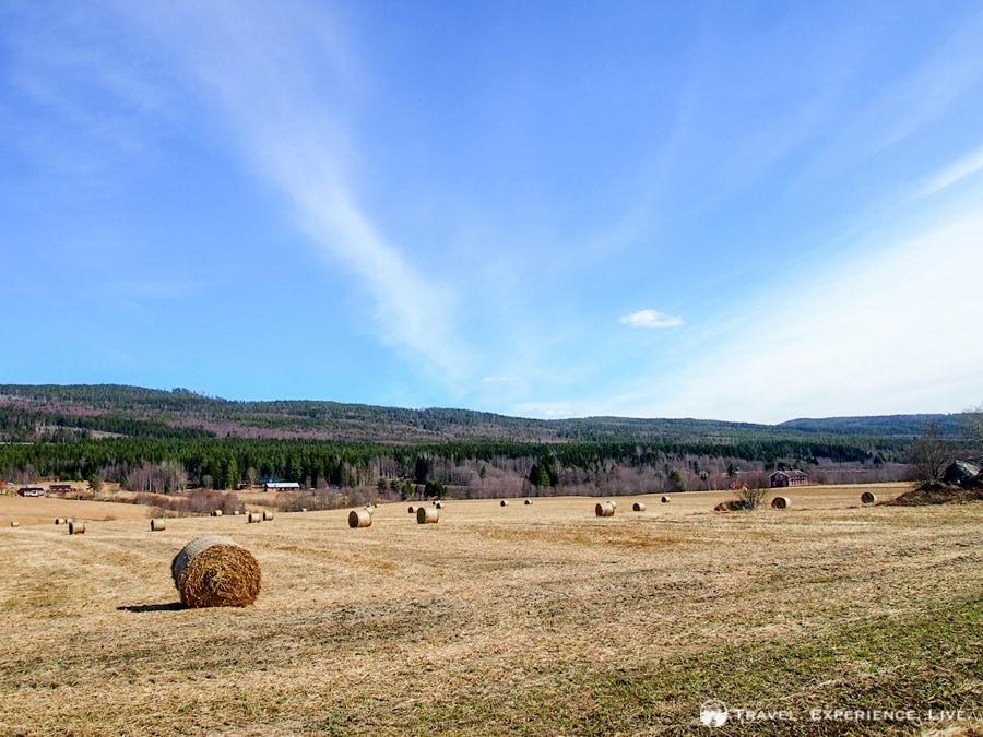 Beautiful farmland in eastern Sweden