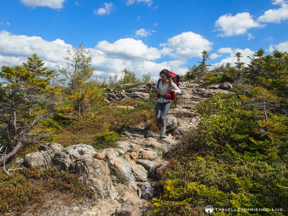 Hiking the Moat Mountain Trail