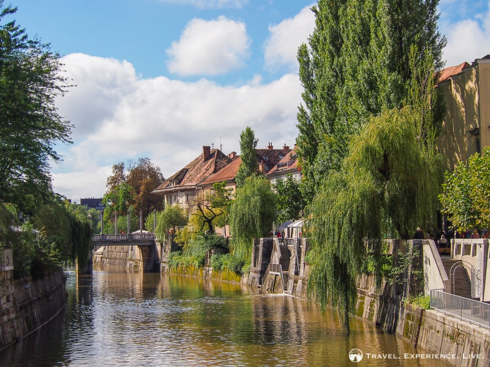 Green banks of the Ljubljanica River