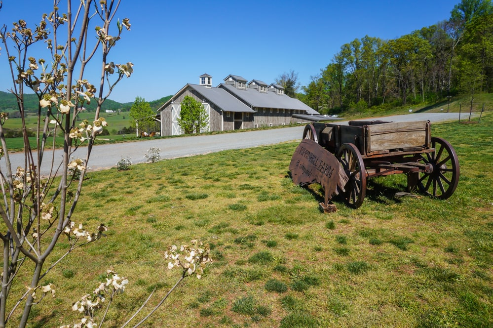 Pippin Hill Farm and Vineyards, Virginia