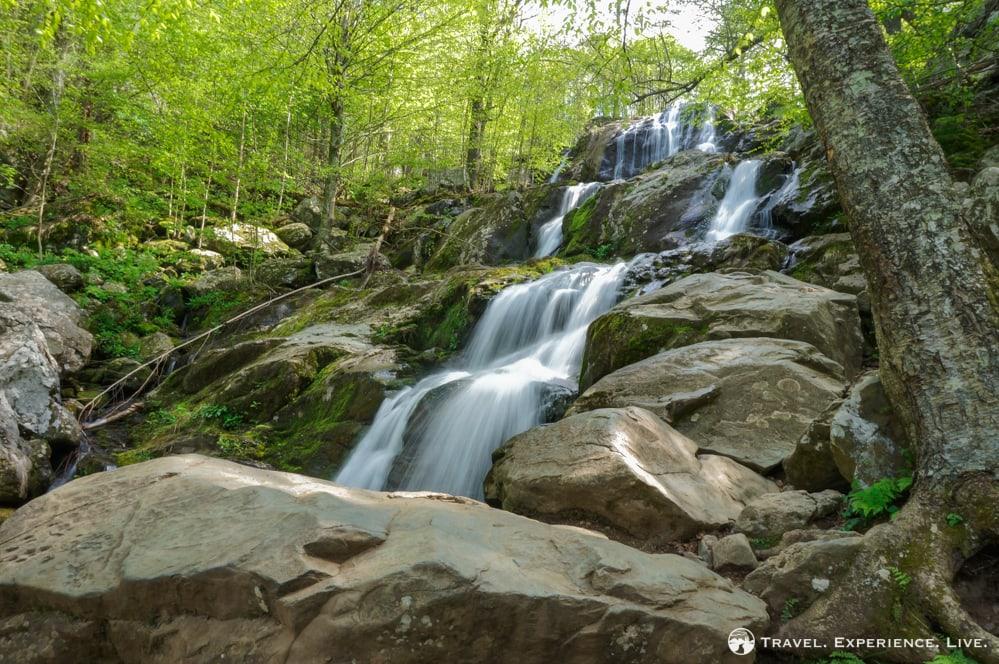 Cascading Dark Hollow Falls, Shenandoah National Park