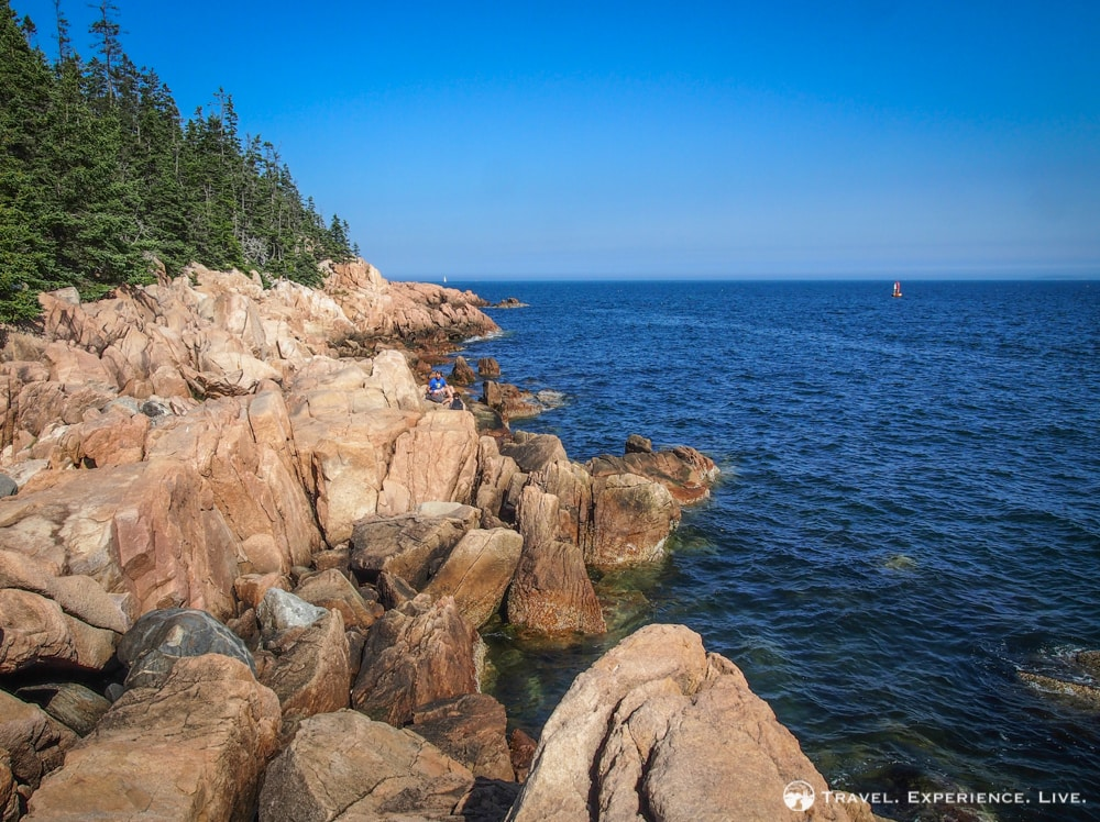 Rocky coastline on Mount Desert Island, Maine