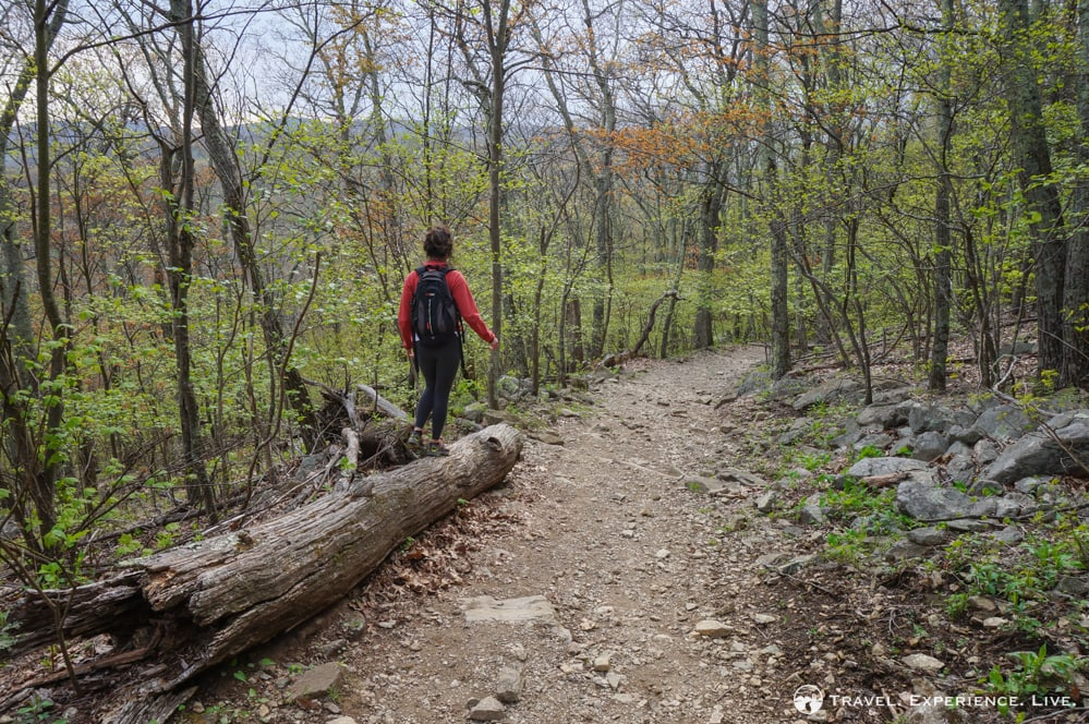 Hiking the Spy Rock Trail, Virginia